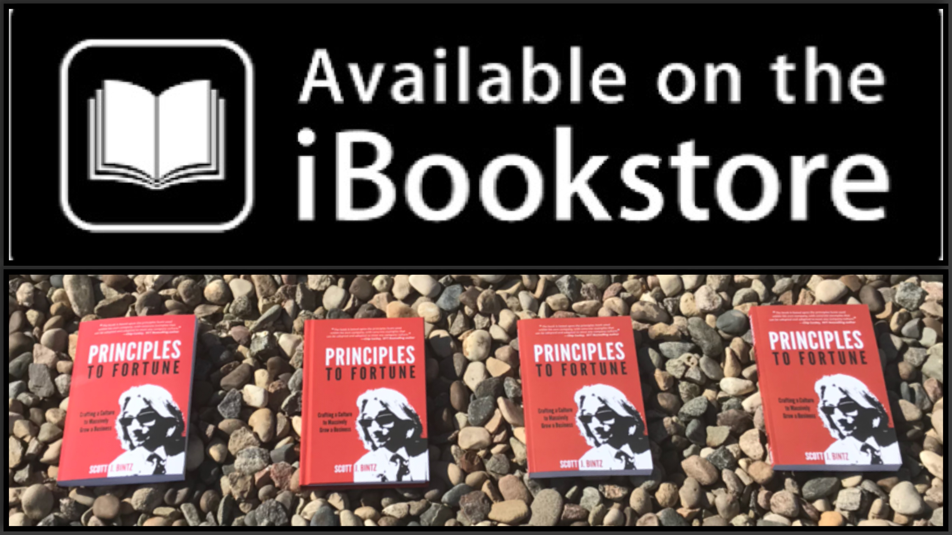 Principles to Fortune is Available on iBook Store