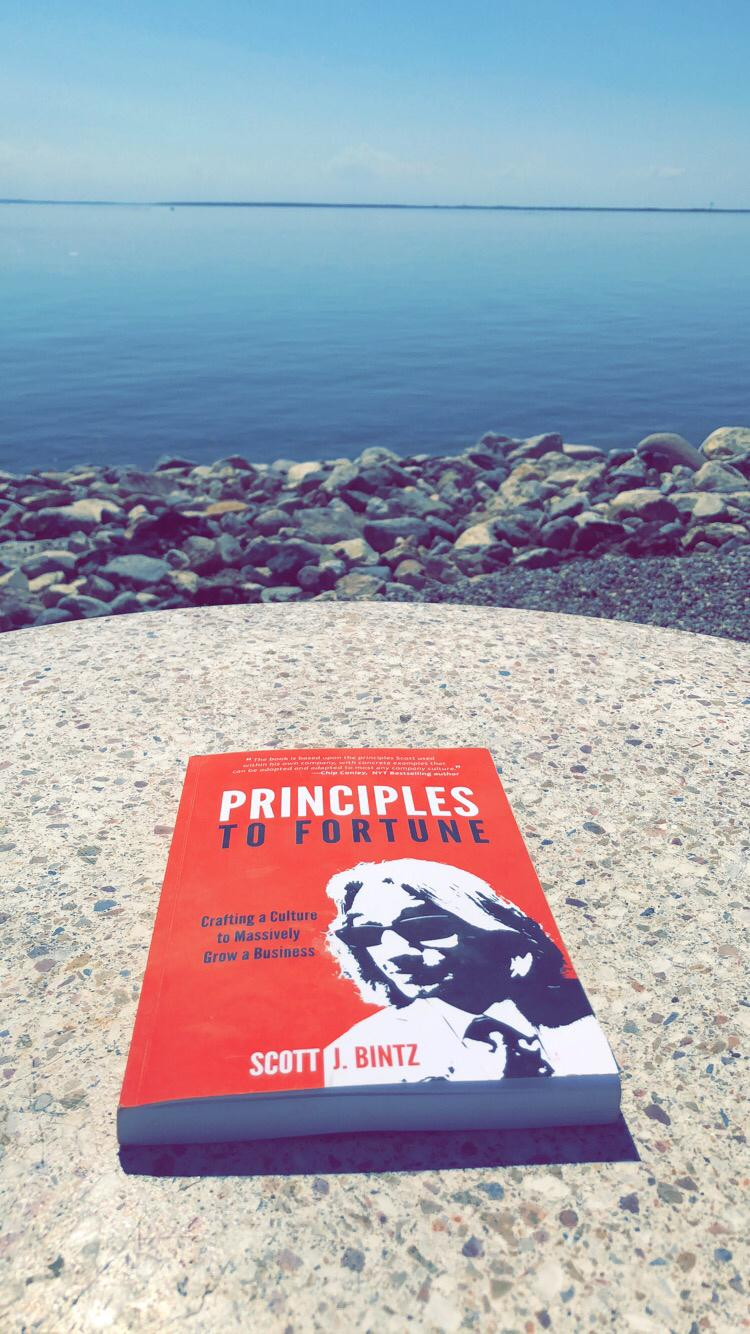 Free Principles to Fortune Book from iBooks